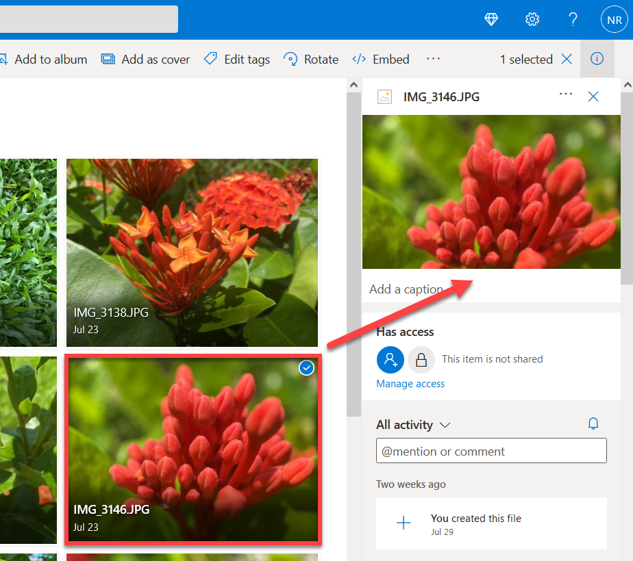 OneDrive details pane for an image.